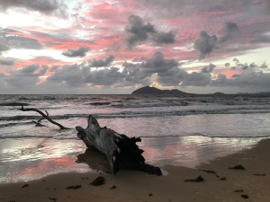 Sunrise Mission Beach Dunk Island Driftwood
