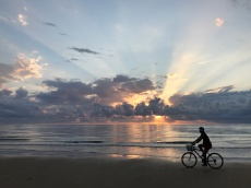 Sunrise Mission Beach Bike Riding