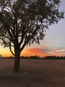Sunset Thompson River Longreach