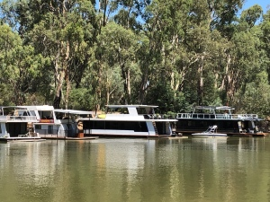 Murray River Boats Echuca