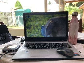 My office on the back patio